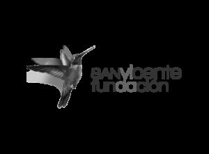 FUNDACION SAN VICENTE